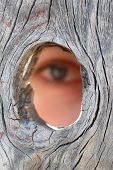 image of peeping tom  - someone peeping through a hole in a fence - JPG