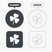 foto of clover  - Clover with three leaves sign icon - JPG