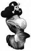 image of dodo  - Dodo - JPG