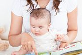 Attentive Mother Showing Images In A Book To Her Cute Little Son