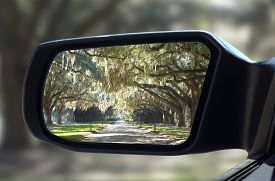 stock photo of slavery  - Rearview car mirror in forest live green oak trees that hang down in unique pattern - JPG