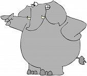 Mad Elephant