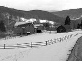 Horse Farm In Winter