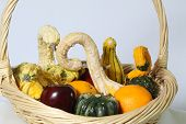Basket of Vegetables and Fruit