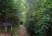 Path Orton