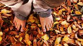 Barefoot In The Leaves
