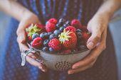 Organic Fresh Harvested Berries. Hands Holding Fresh Juicy Berries, Closeup poster