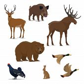 Wild Forest Animal And Bird Isolated Icon Set For Hunting Sport Design. Bear, Duck And Deer, Reindee poster
