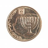 Ten Israeli New Sheqel cents - Back side
