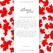 Greeting Card With The Theme Canada Flag Background With Red Maple Canadian Leaves On A Light Backgr poster
