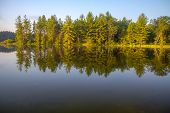 Forest Lake Reflections. Beautiful Wilderness Forest Reflected In The Calm Water Of A Northern Michi poster