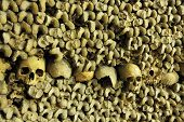 stock photo of catacombs  - piles of bones an skulls inside Les Catacombes - JPG