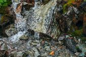 Scenic Background With Clear Spring Water Stream Among Stones With Thick Moss. Mountain Creek Flows  poster