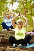 Retrato de duas fêmeas envelhecidas praticando yoga no Parque