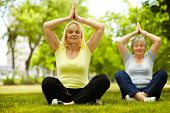 Portrait of two aged females doing yoga exercise in park