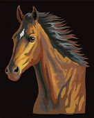 Colorful Horse Portrait. Bay Horse Head With Long Mane Isolated On Black Background. Colorful Vector poster