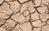 Cracked Soil Pattern Background