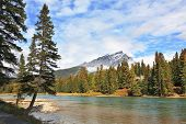Mountains and pines at the mountain river Banff. Early autumn in the Rocky Mountains of Canada