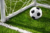 Soccer ball and goal net