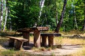 Picnic Site In Birch Grove. Wooden Table And Benches In Birch Forest poster
