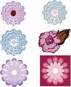 Set Of Vector Flower Designs