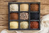Gluten Free Grains - Buckwheat, Black Lentils, Amaranth, Quinoa, Hemp Seeds, Sorghum Grain, Teff And poster