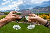 Red And White Wine Glasses Cheering, Hands Selective Focus Close Up View, Winery Vineyard Tour, Tast poster