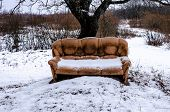 An Old Discarded Sofa In The Snow Stands Under A Tree. Man Pollutes The Surrounding Nature. Environm poster