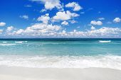 Idyllic Tropical White Sand Beach With Turquoise Blue Waters On A Sunny Summer Day. Beautiful Tropic poster