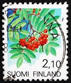 Postage stamp Finland 1991 European Rowan Fruit