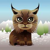 baby Animal Sammlung: Lynx