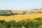 foto of senesi  - Crete senesi characteristic landscape in Val d - JPG