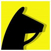 Equestrian Sports Pictogram