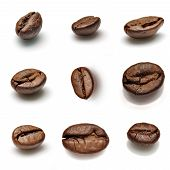 Set Of Coffee Beans