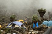 Campamento de barranco en la ruta Machame