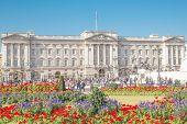 The Buckingham Palace.