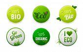 Set Of Bio, Eco, Organic Sticker Elements