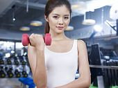 Young Girl In Gym