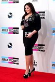 LOS ANGELES - NOV 24:  Hillary Scott at the 2013 American Music Awards Arrivals at Nokia Theater on