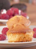 close up muffin