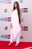 LOS ANGELES - NOV 24:  Zendaya Coleman at the 2013 American Music Awards Arrivals at Nokia Theater o