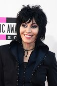 LOS ANGELES - NOV 24:  Joan Jett at the 2013 American Music Awards Arrivals at Nokia Theater on Nove