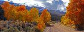 Fall Foliage At The Eastern Sierra Nevada Mountains In California