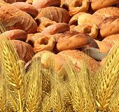 Wheat Bread Harvest