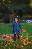Baby Collecting Autumn Leaves