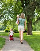 Full length rear view of mid adult woman with children strolling in park