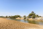 Oasis With Pond In Desert (oman)