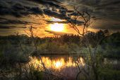 picture of shooting-range  - Beautiful sunset shoot in high dynamic range  - JPG