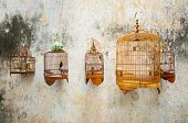 Birdcages with the birds hanging on the wall