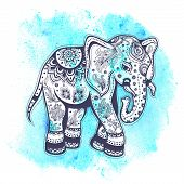image of indian elephant  - Vintage elephant illustration  with blue watercolor background - JPG